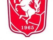 Fc Twente shirt 2013 Nike