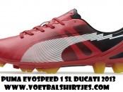 Puma voetbalschoenen 2013