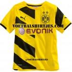 Borussia Dortmund thuisshirt 2014/2015