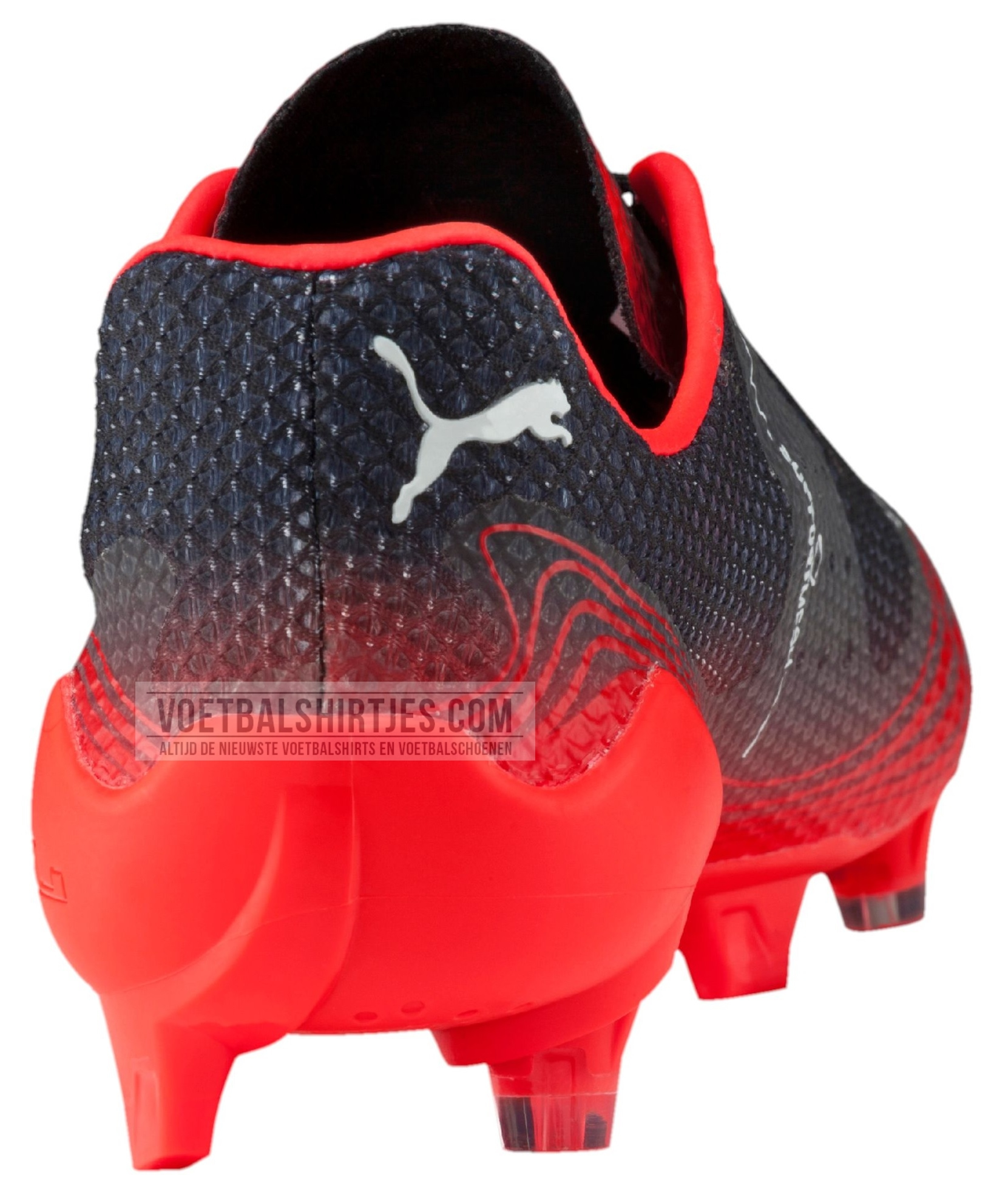 puma_evospeed_fresh_red