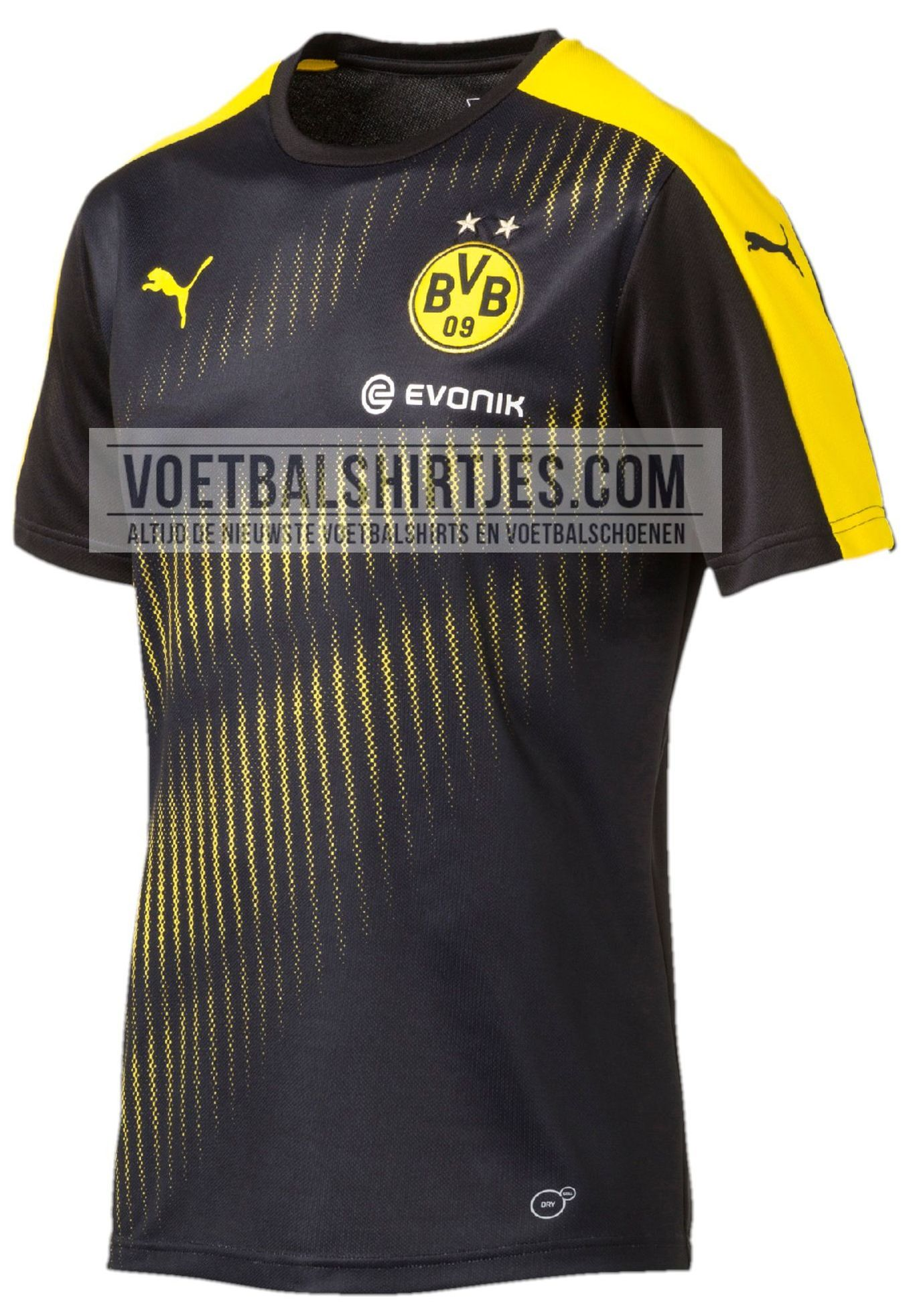 BVB training top 2017