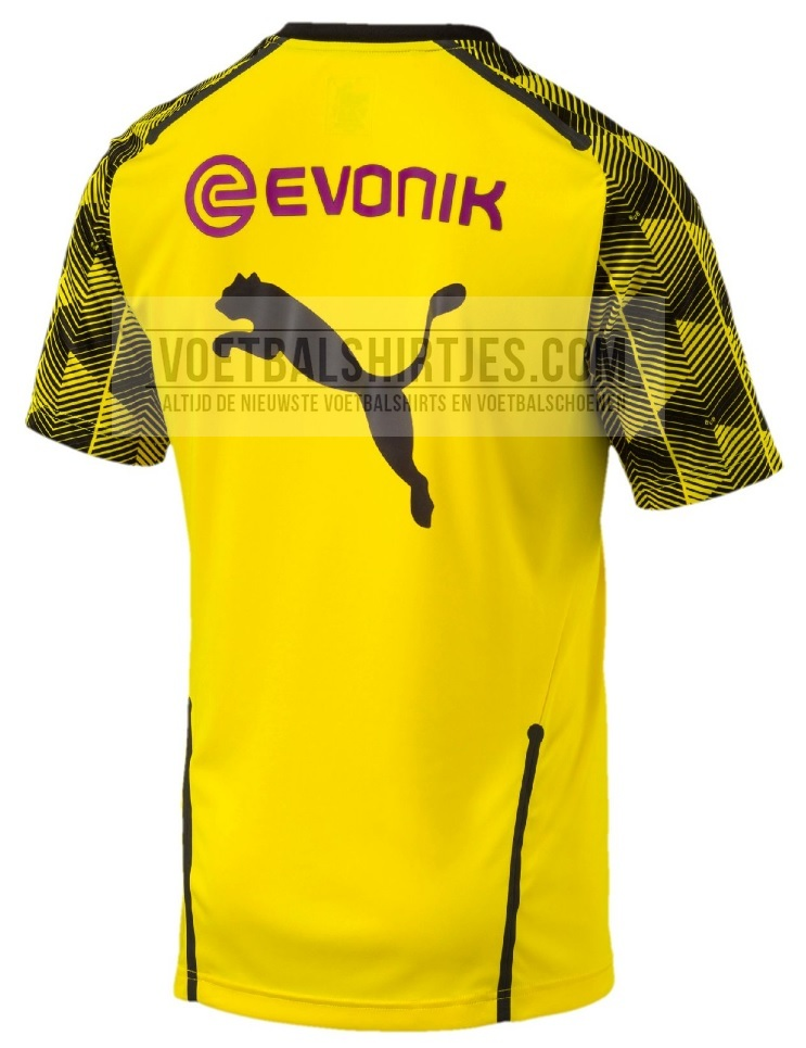 BVB training top 2018