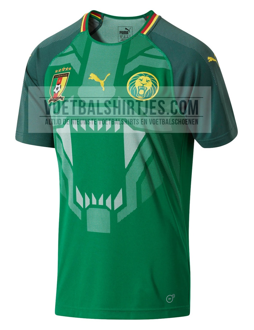 Cameroon home jersey 2018