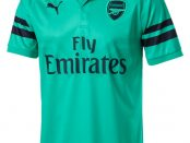 Arsenal 18-19 3rd kit